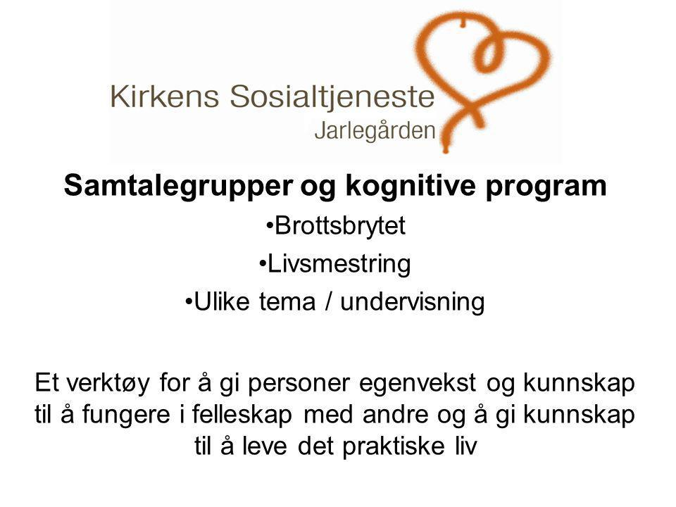 Samtalegrupper og kognitive program