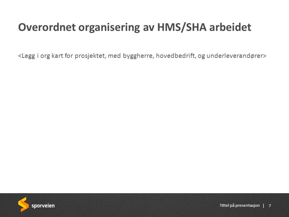 Overordnet organisering av HMS/SHA arbeidet
