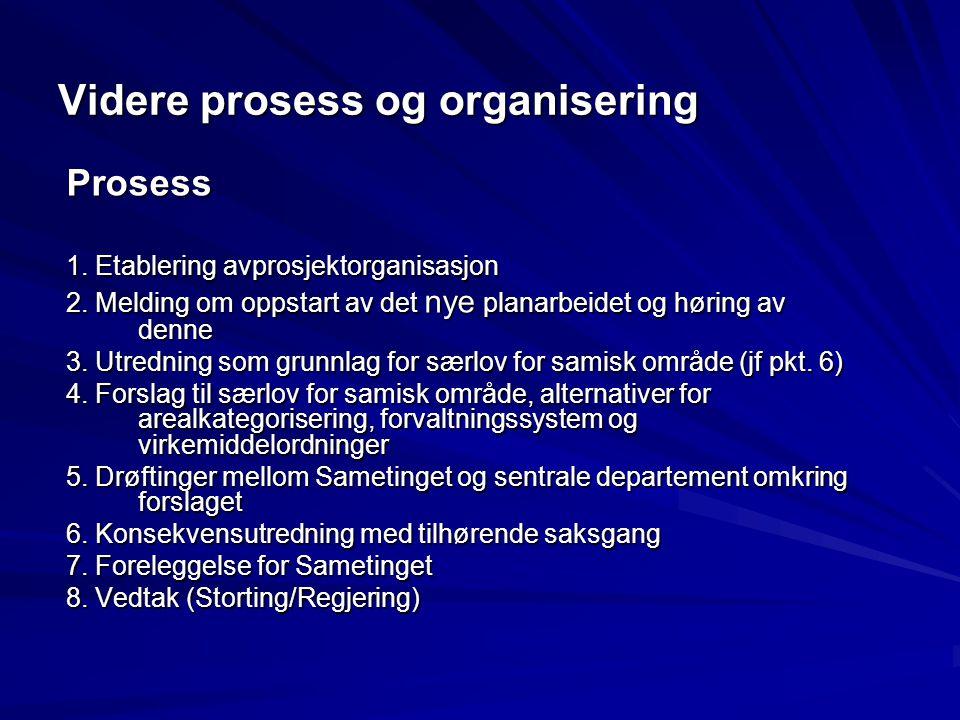 Videre prosess og organisering