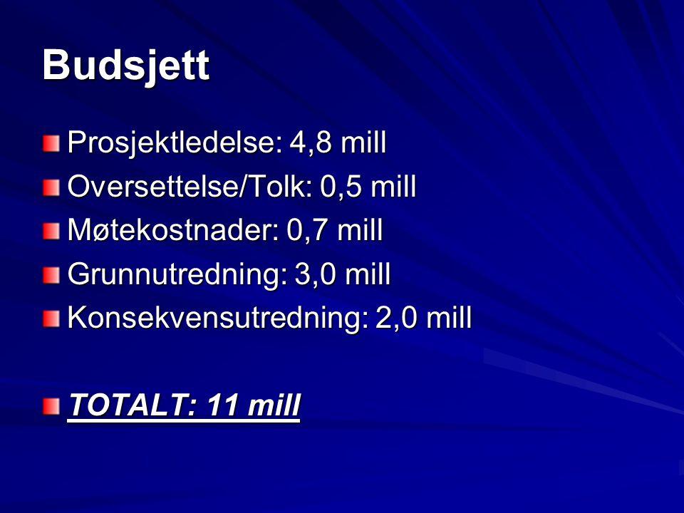 Budsjett Prosjektledelse: 4,8 mill Oversettelse/Tolk: 0,5 mill