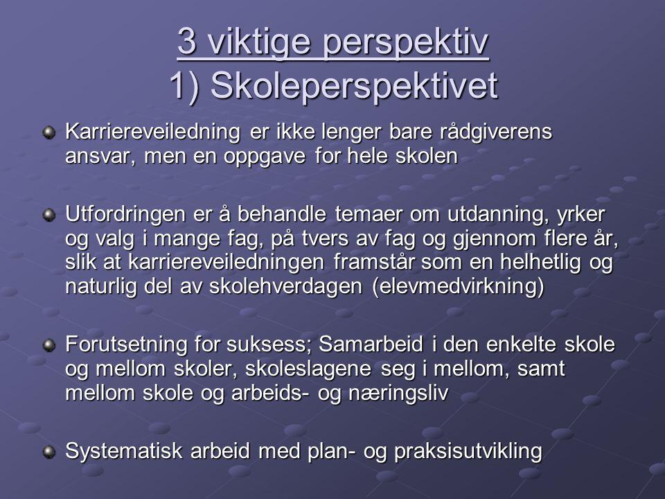 3 viktige perspektiv 1) Skoleperspektivet