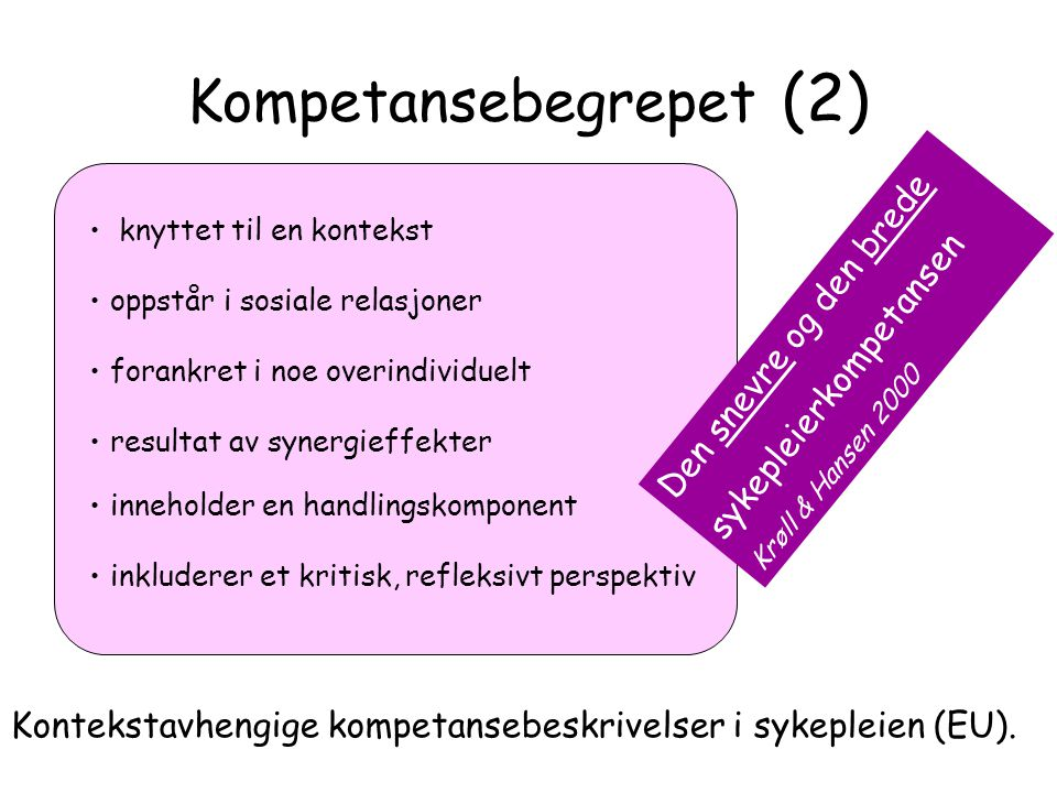 Kompetansebegrepet (2)