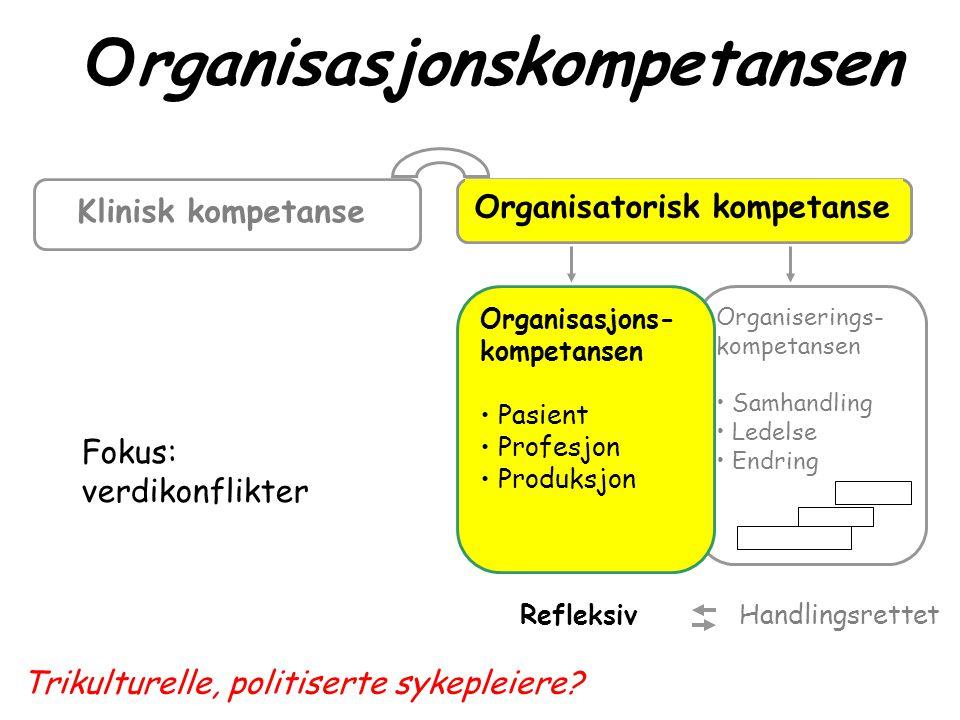 Organisasjonskompetansen