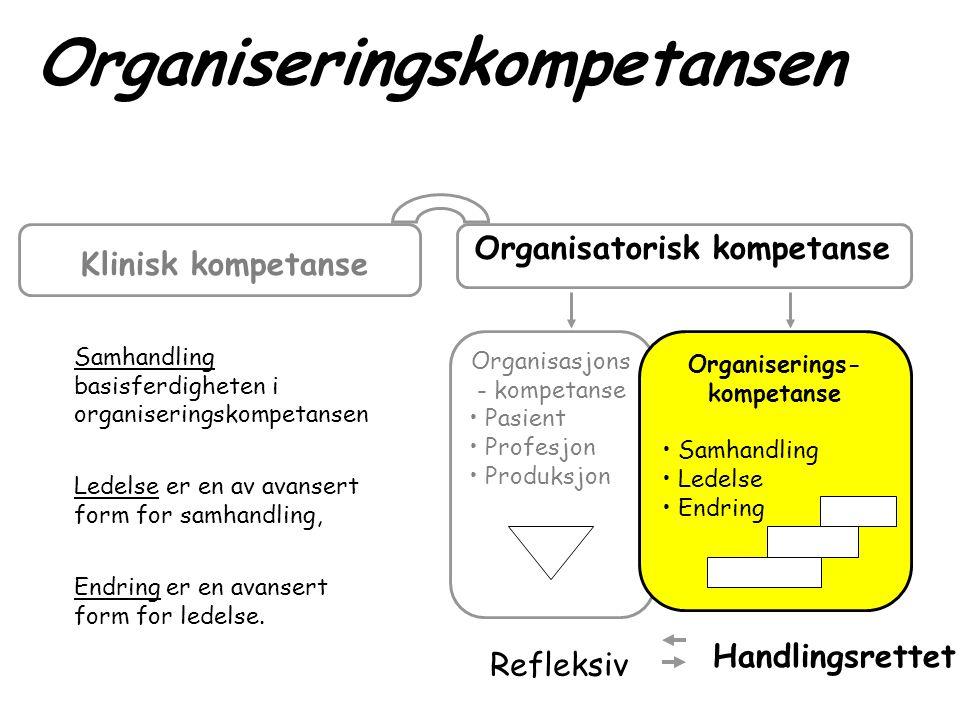 Organiserings- kompetanse