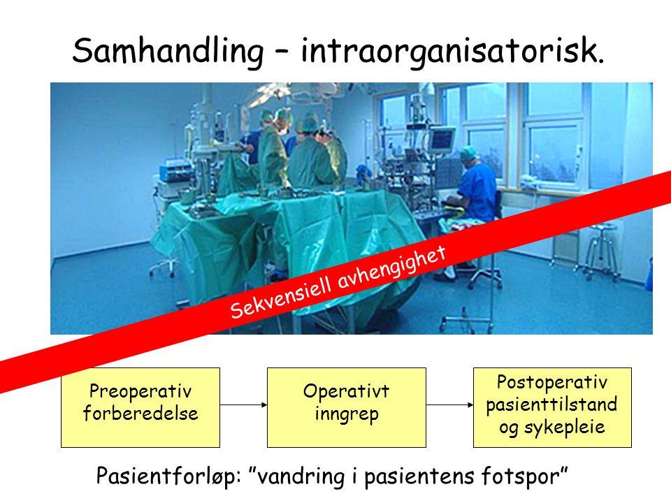 Samhandling – intraorganisatorisk.