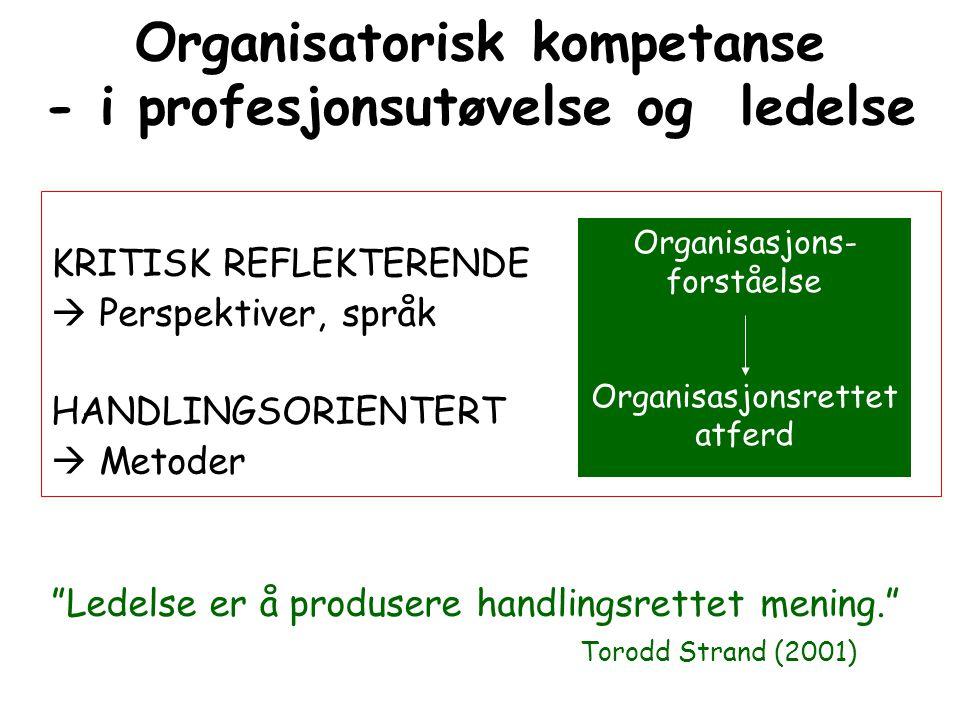 Organisatorisk kompetanse - i profesjonsutøvelse og ledelse