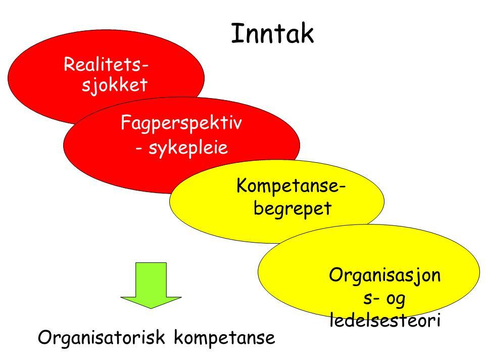Organisasjons- og ledelsesteori