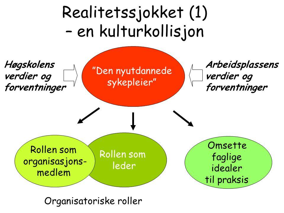 Realitetssjokket (1) – en kulturkollisjon
