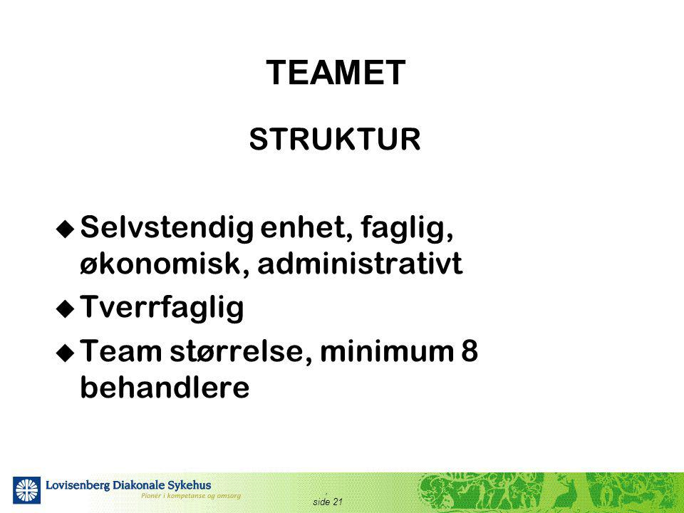 TEAMET STRUKTUR Selvstendig enhet, faglig, økonomisk, administrativt