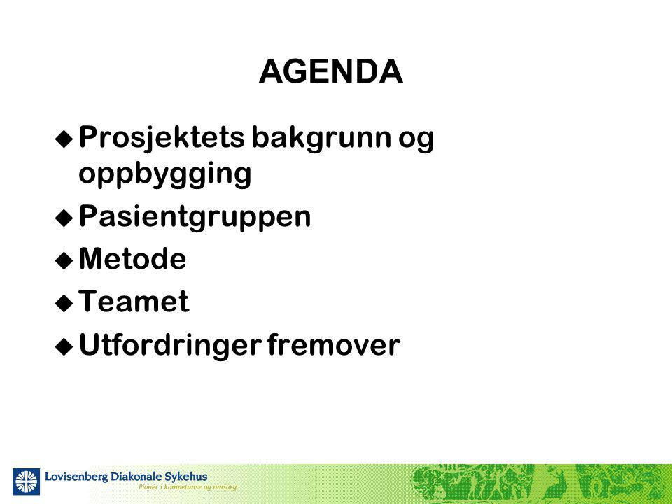 AGENDA Prosjektets bakgrunn og oppbygging Pasientgruppen Metode Teamet