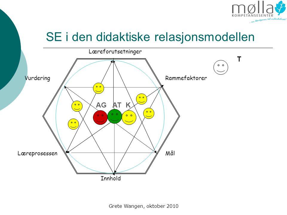 SE i den didaktiske relasjonsmodellen