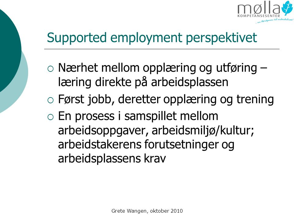 Supported employment perspektivet