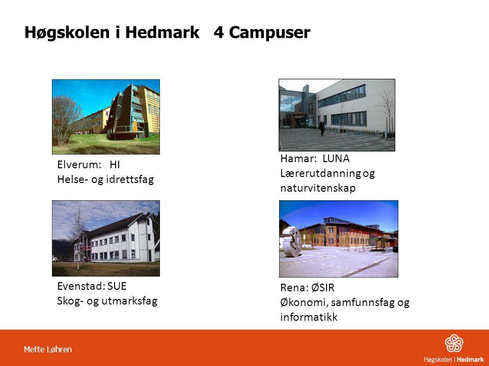 Høgskolen i Hedmark 4 Campuser