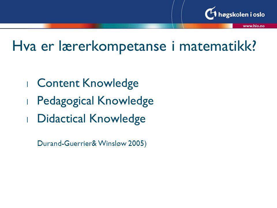Hva er lærerkompetanse i matematikk