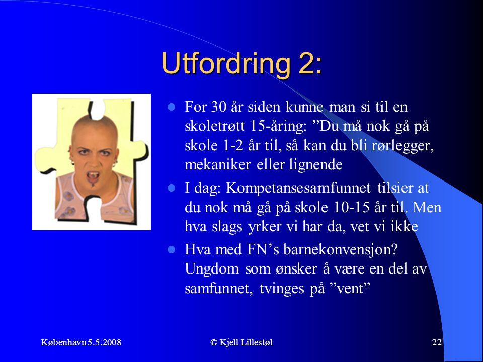 Utfordring 2: