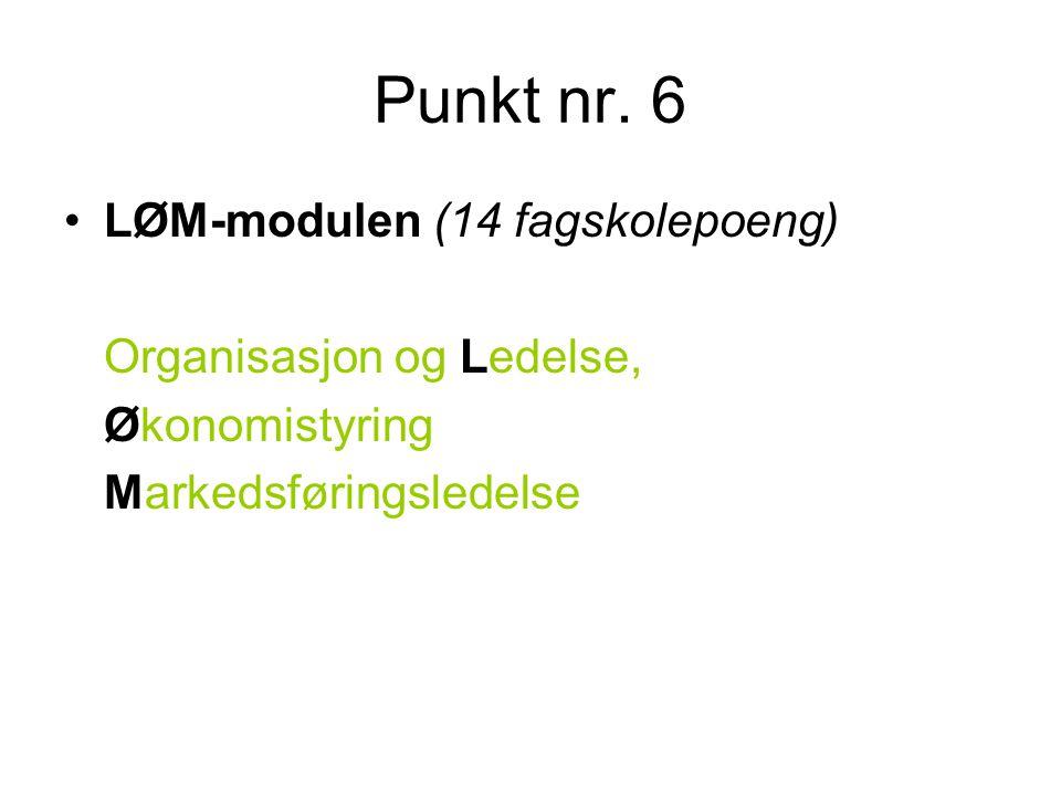 Punkt nr. 6 LØM-modulen (14 fagskolepoeng) Organisasjon og Ledelse,