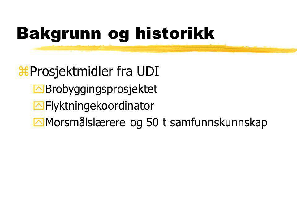 Bakgrunn og historikk Prosjektmidler fra UDI Brobyggingsprosjektet