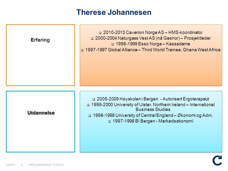 Therese Johannesen Erfaring Utdannelse