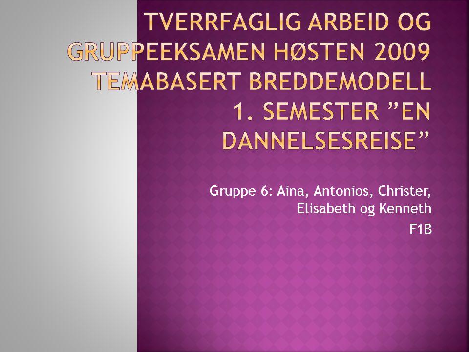 Gruppe 6: Aina, Antonios, Christer, Elisabeth og Kenneth F1B