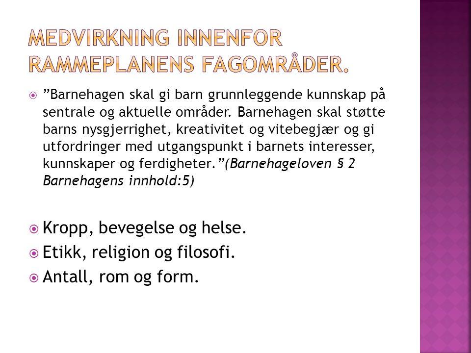 MEDVIRKNING INNENFOR RAMMEPLANENS FAGOMRÅDER.