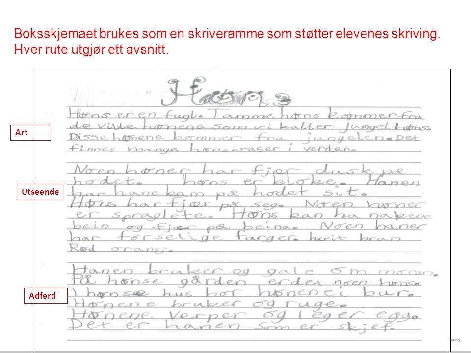 Boksskjemaet brukes som en skriveramme som støtter elevenes skriving