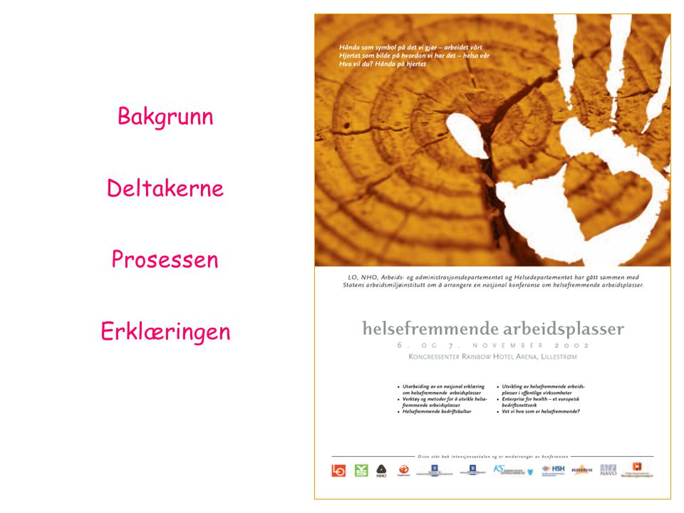 Bakgrunn Deltakerne Prosessen Erklæringen Lillestrøm konferansen