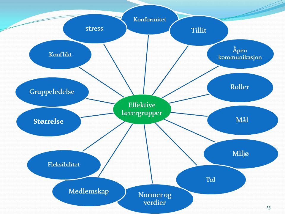 Effektive lærergrupper