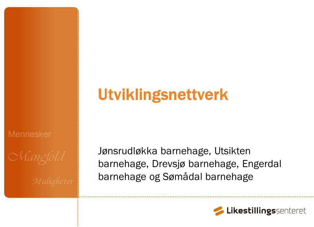 Utviklingsnettverk Midler fra Fylkesmannen. Jønsrudløkka barnehage – 2 runder fra jan 2010. Utsikten bhg.
