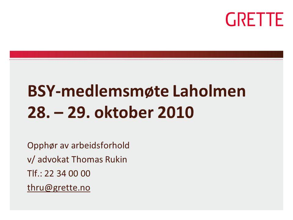 BSY-medlemsmøte Laholmen 28. – 29. oktober 2010