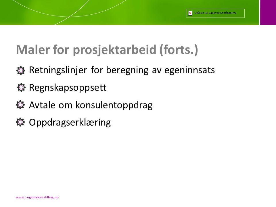 Maler for prosjektarbeid (forts.)