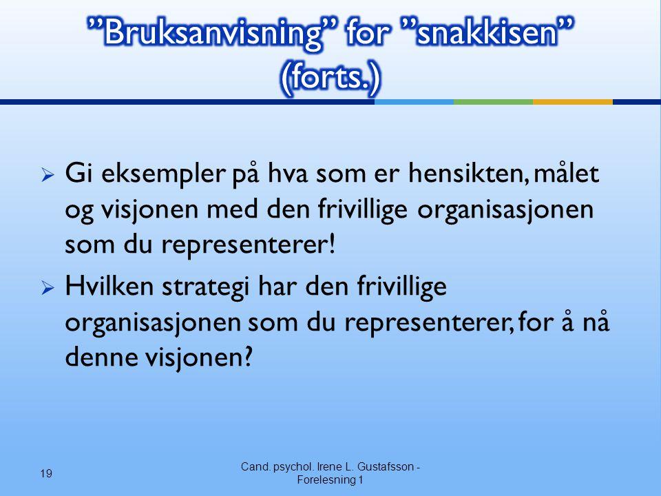 Bruksanvisning for snakkisen (forts.)