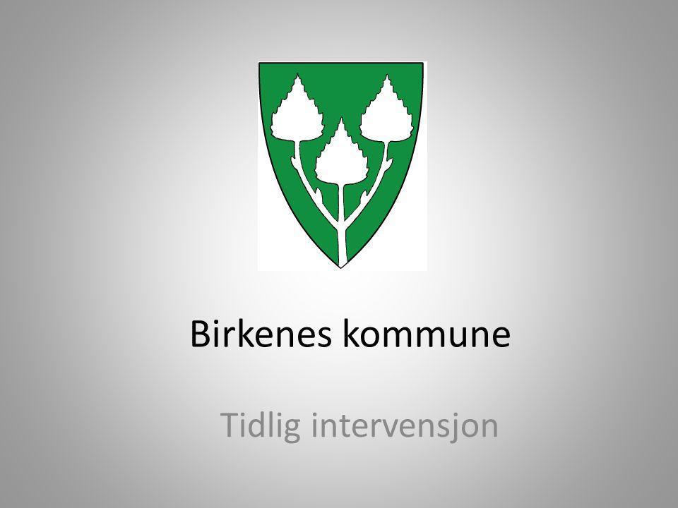 Birkenes kommune Tidlig intervensjon