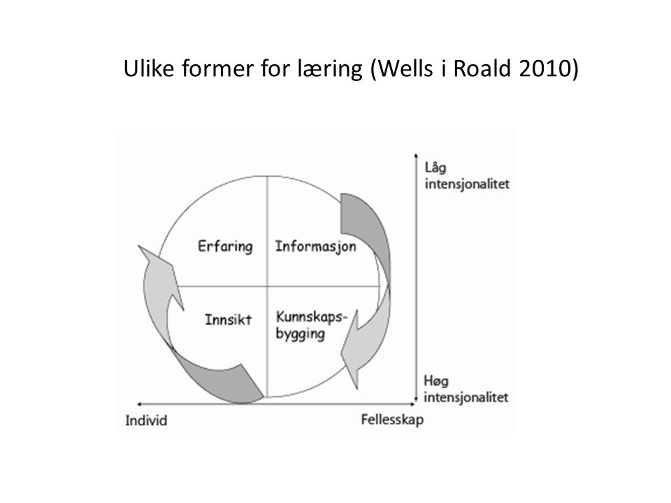 Ulike former for læring (Wells i Roald 2010)