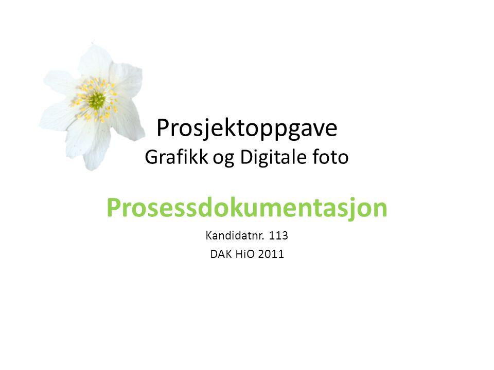 Prosjektoppgave Grafikk og Digitale foto