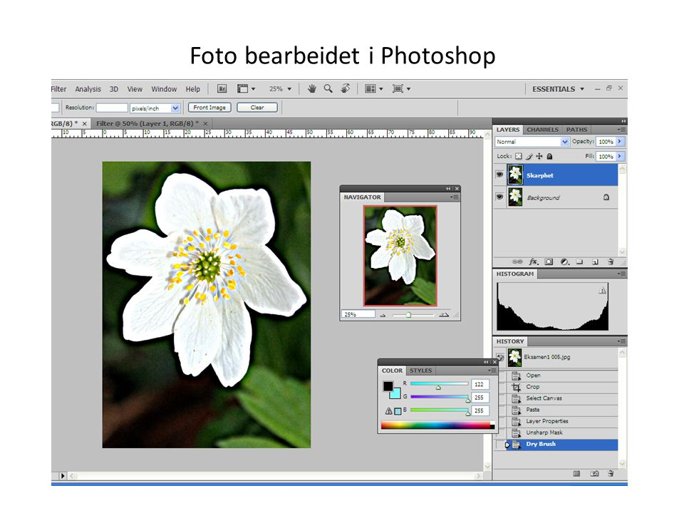 Foto bearbeidet i Photoshop