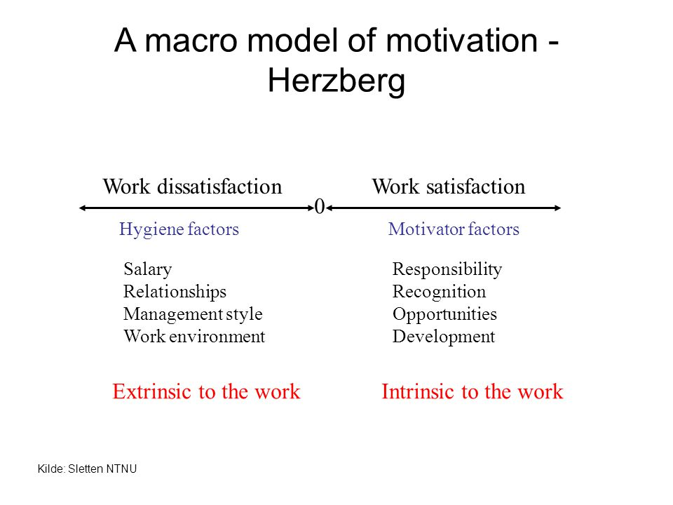 A macro model of motivation - Herzberg