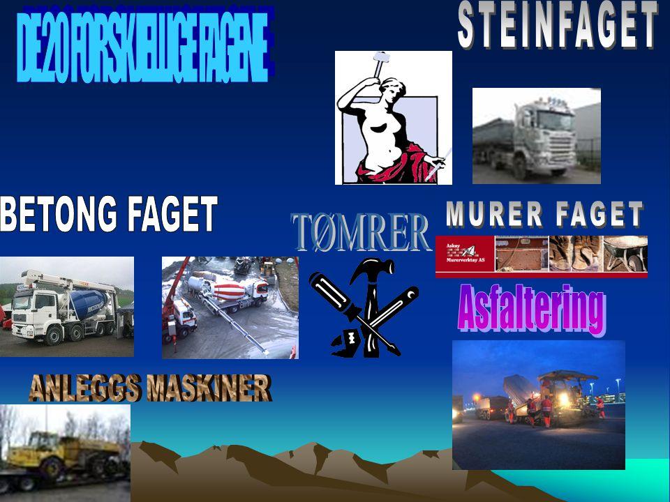 DE 20 FORSKJELLIGE FAGENE