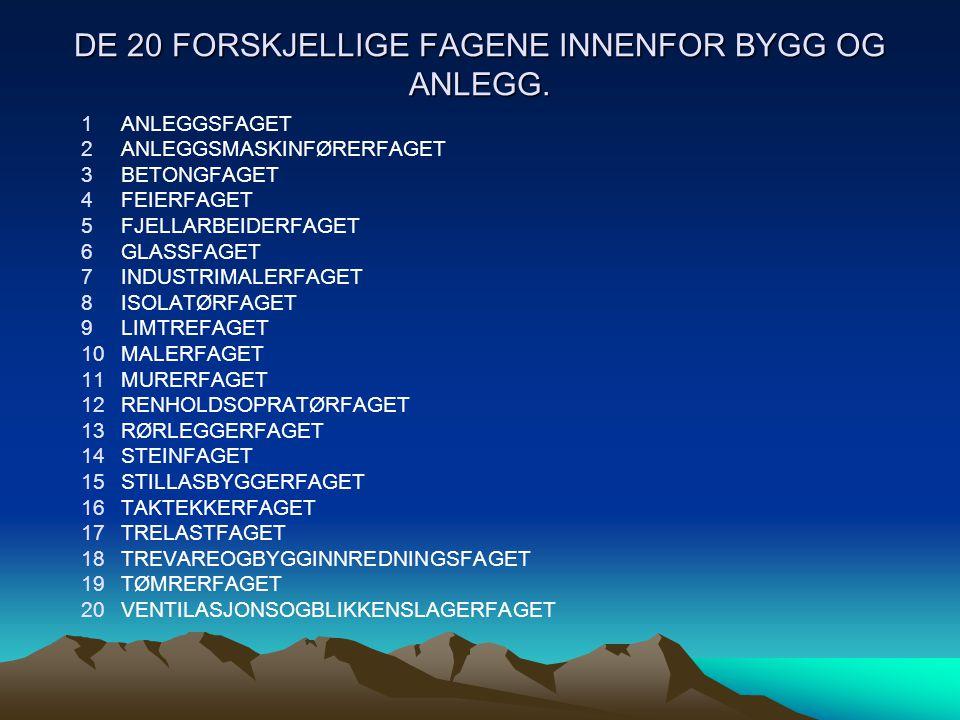 DE 20 FORSKJELLIGE FAGENE INNENFOR BYGG OG ANLEGG.