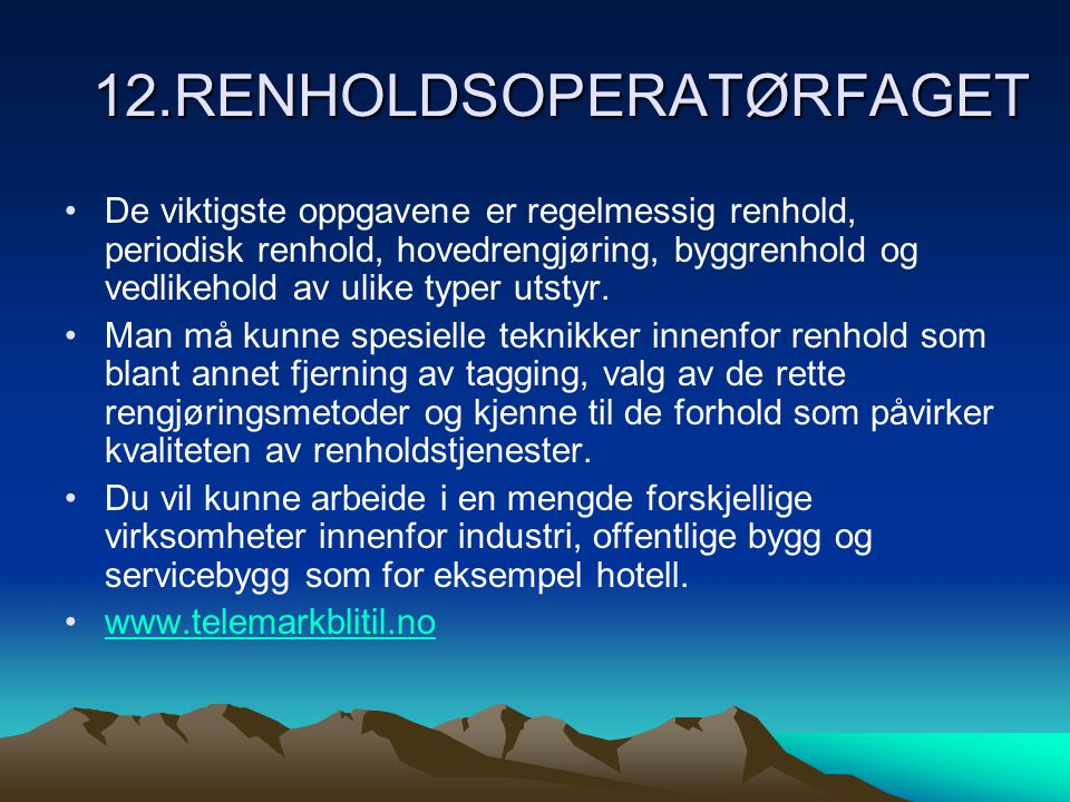 12.RENHOLDSOPERATØRFAGET