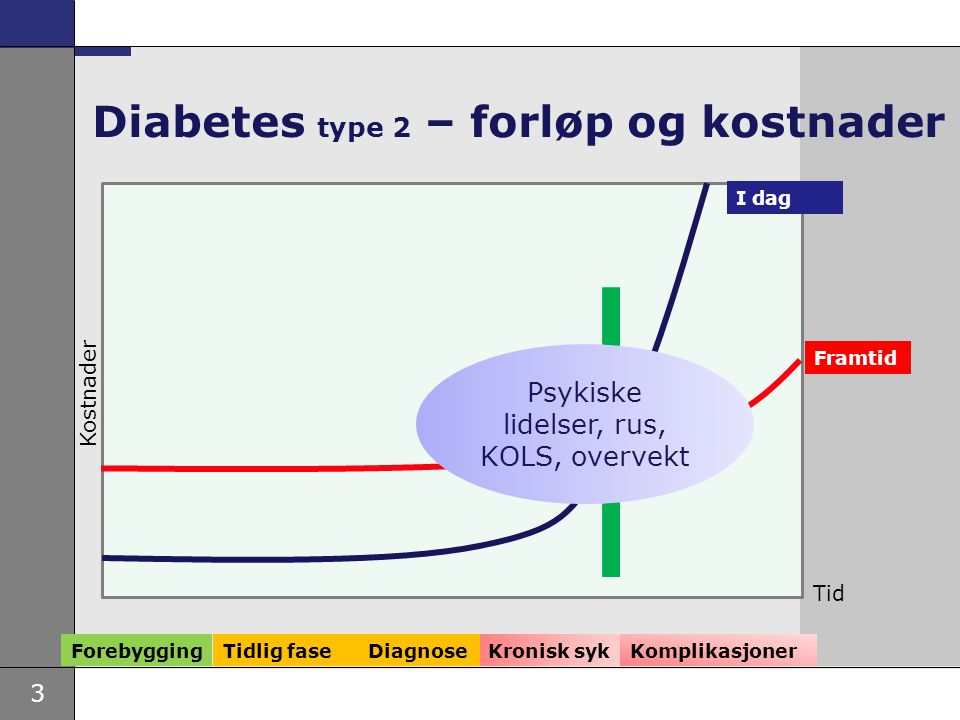 Diabetes type 2 – forløp og kostnader