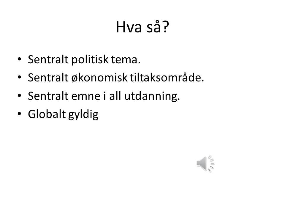 Hva så Sentralt politisk tema. Sentralt økonomisk tiltaksområde.
