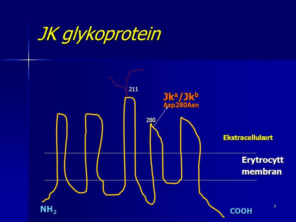 JK glykoprotein Jka/Jkb Asp280Asn Erytrocytt membran NH2 COOH