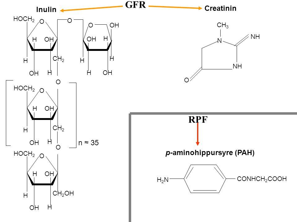 GFR RPF Creatinin Inulin n ≈ 35 p-aminohippursyre (PAH) HOCH2 O O O OH
