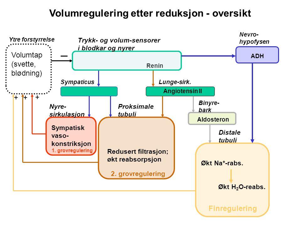 Volumregulering etter reduksjon - oversikt