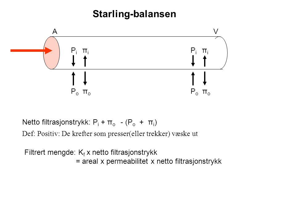 Starling-balansen A V Pi πi Pi πi Po πo Po πo