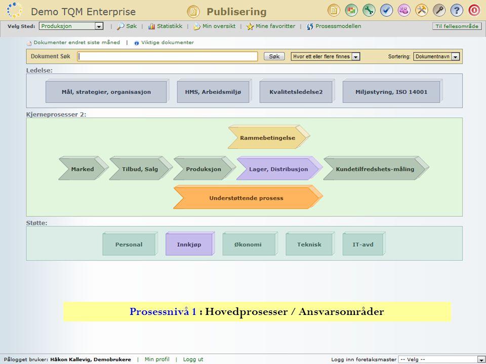 Prosessnivå 1 : Hovedprosesser / Ansvarsområder