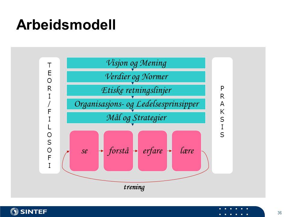 Arbeidsmodell Visjon og Mening Verdier og Normer Etiske retningslinjer