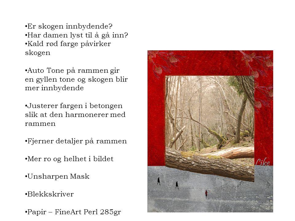 Er skogen innbydende Har damen lyst til å gå inn Kald rød farge påvirker skogen.