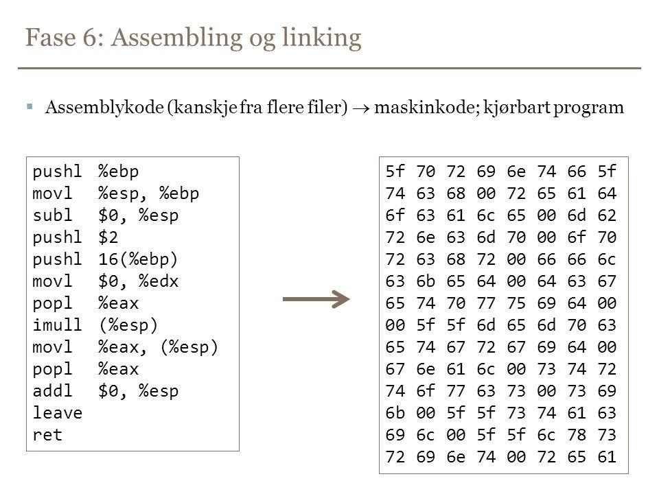 Fase 6: Assembling og linking
