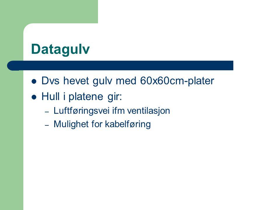Datagulv Dvs hevet gulv med 60x60cm-plater Hull i platene gir: